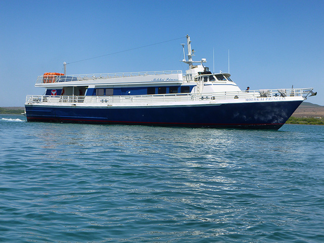 Maui Charter Opportunity